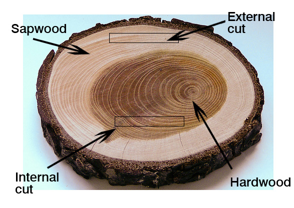 How to cut guitar wood